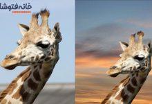 تصویر در حذف بکگراند عکس در فتوشاپ | آموزش مرحله به مرحله