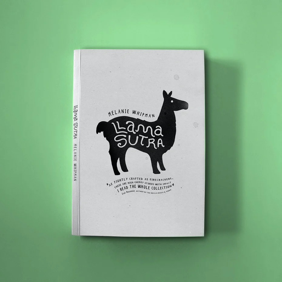 چگونه جلد کتاب طراحی کنیم
